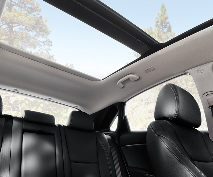 Interior shot of Hyundai Elantra GT 2017 panoramic sunroof over entire roof