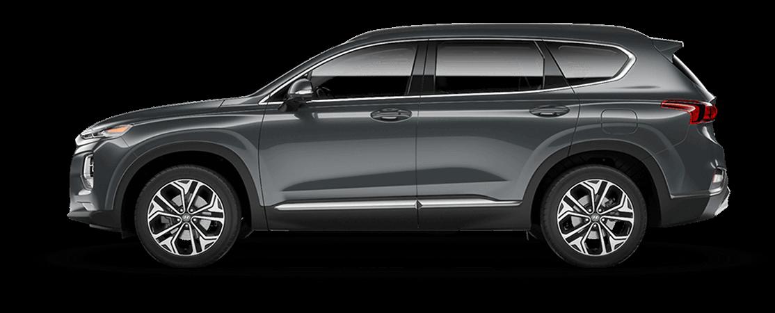 Hyundai SANTA FE 2020 Forêt tropicale