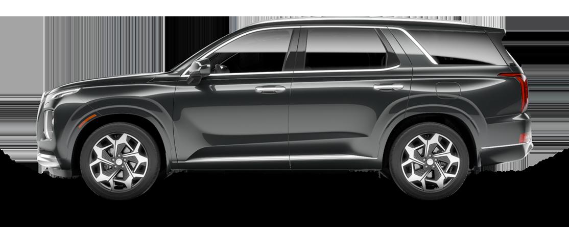 Hyundai PALISADE 2021 Forêt tropicale